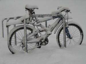 雪 自転車