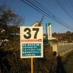 37km:坊主、自分の力で勝ったのではないぞ!このつくばコースの特性のおかげだということを忘れるな!