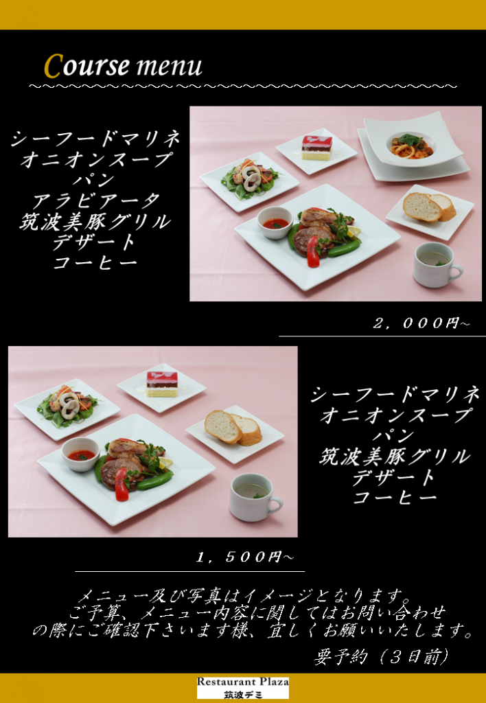 筑波大学デミ3
