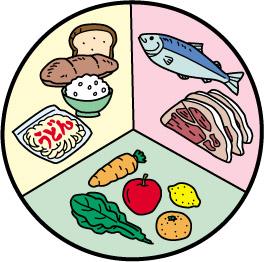 筑波大生栄養バランス