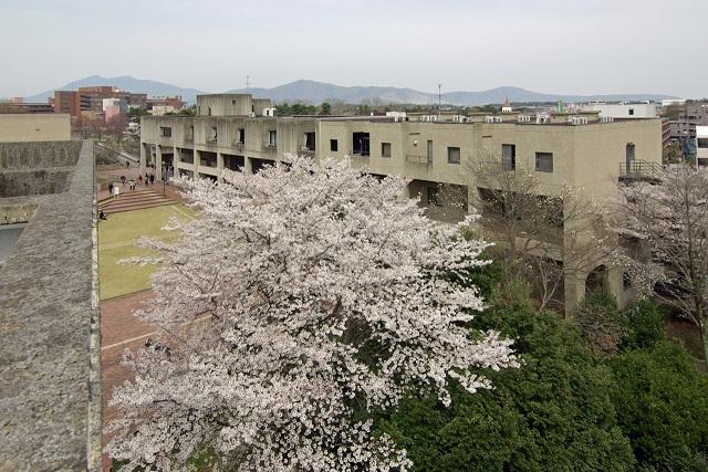 大学会館 宿泊施設