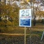 25km:日頃から謙虚でなければ、運さえ向いてこない。