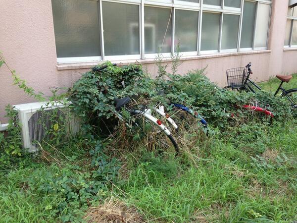 筑波大学 放置自転車2
