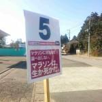 5km:マラソンに状況など選べはしない。マラソンは、生か死かだ。