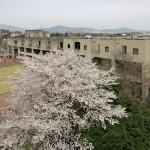 [筑波大学の施設紹介]様々なイベントが行われる筑波大学の大学会館がどんなところか簡単に紹介してみた!
