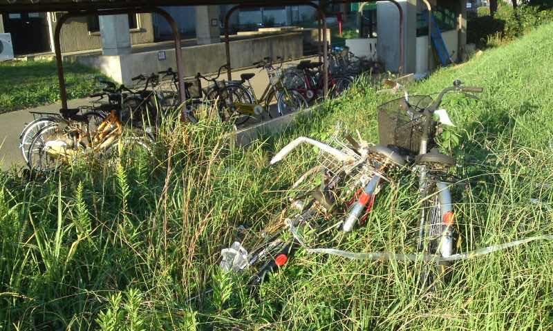 2筑波大学 自転車