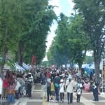 「科学×グローバル×祭り」 !?いよいよ今週末開催!つくばフェスティバルに行こう!