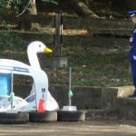 【あの筑波大学のアヒルボート「博士号」が復活!?】松美池で自由にボートに乗れる日がくるかも!!