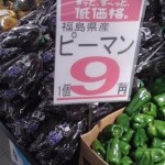[筑波大生必見]カスミやまるもより安いスーパーが誕生!?つくば市初出店の「トライアル」に実際に行って比べてみた!!